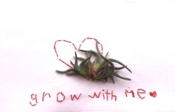 grow with me valentine