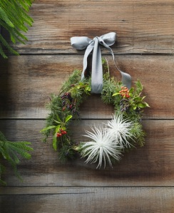 wreath blue cedar