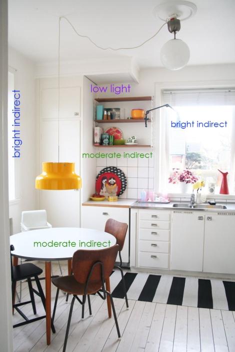 kitchen do over study